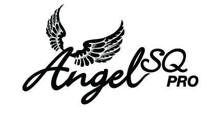 Angel pro