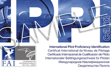Ippi qualifications for paraglider pilots