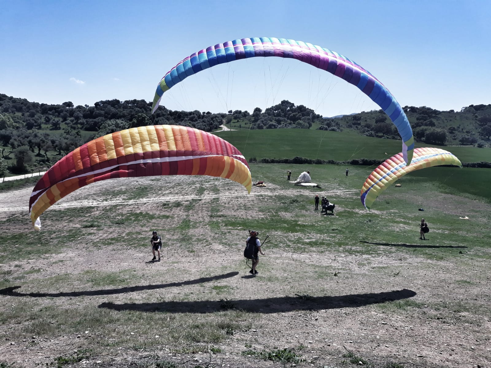 Want to learn paragliding over Summer