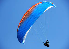 Alpha 28  colour like picture but not actual glider