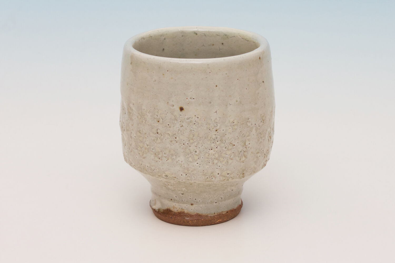 Tim Lake Ceramic Yunomi 015
