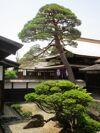 A Design Eye on Japan