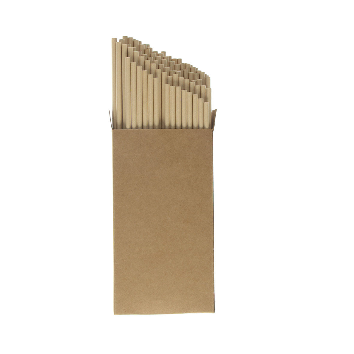 Custom Printed Paper Straws Large Pack
