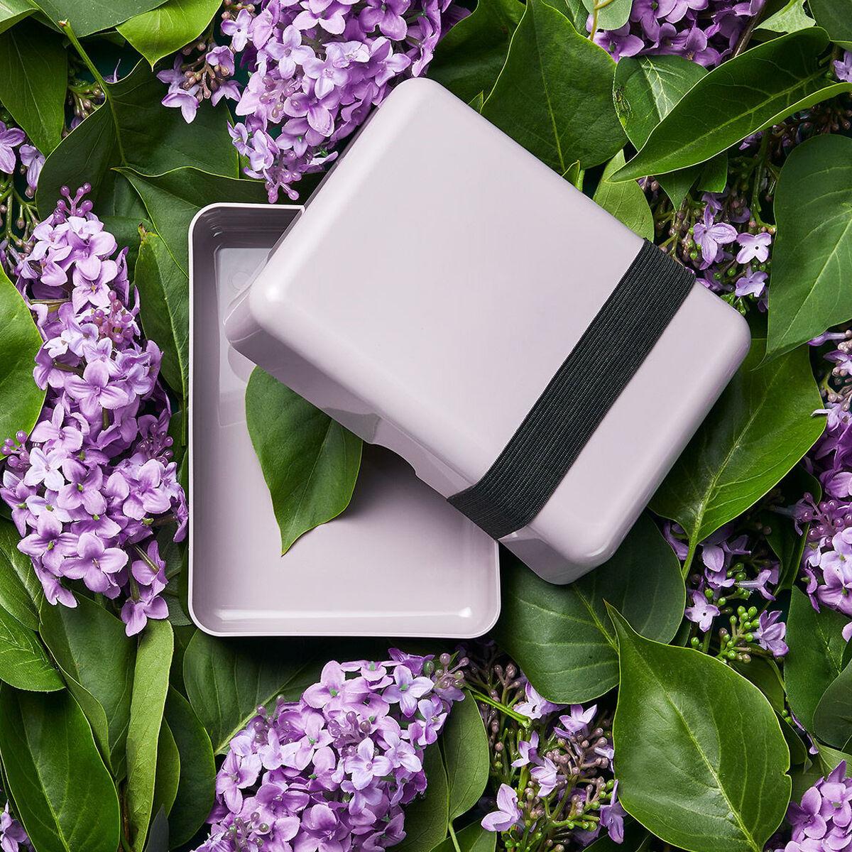 Bioplastic Natural Lunch Box