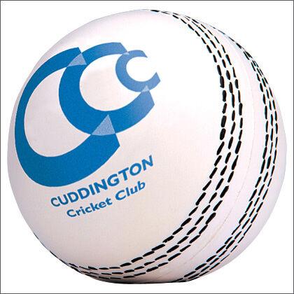 Cricket Ball Stress Shape