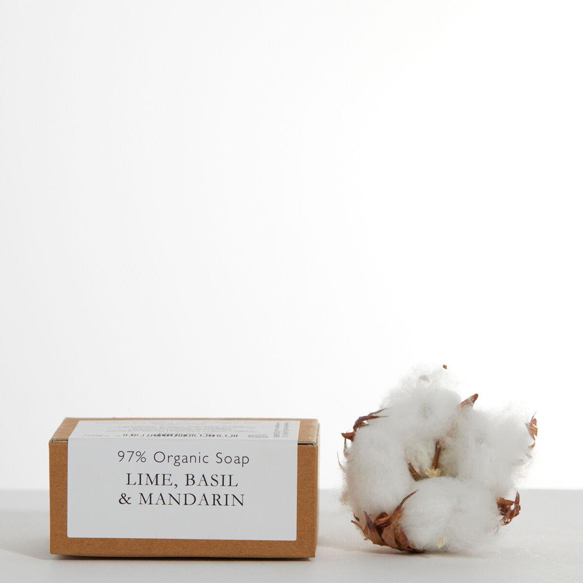 Organic Soap in Kraft Paper