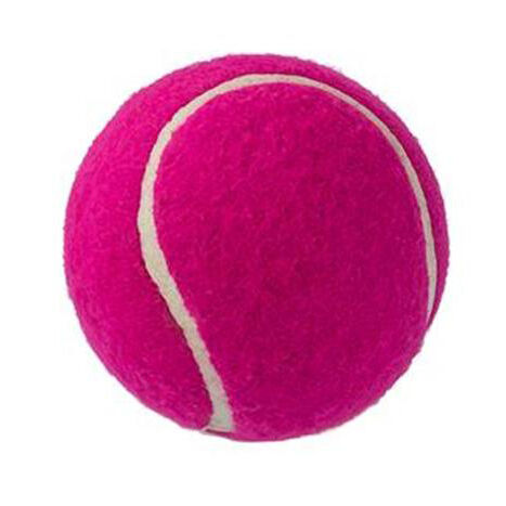 Logo Printed Ball for Dogs