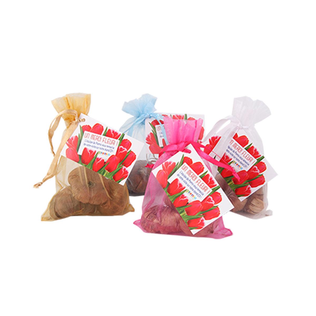 Tulip Bulbs Gift Bag