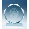 11.5 cm Jade Glass Octagon Award