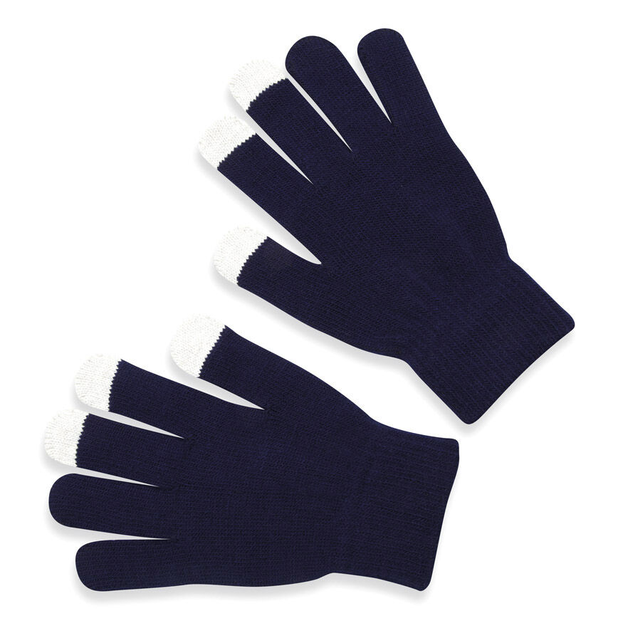 Logo Embroidered Touch Screen Gloves - Blue
