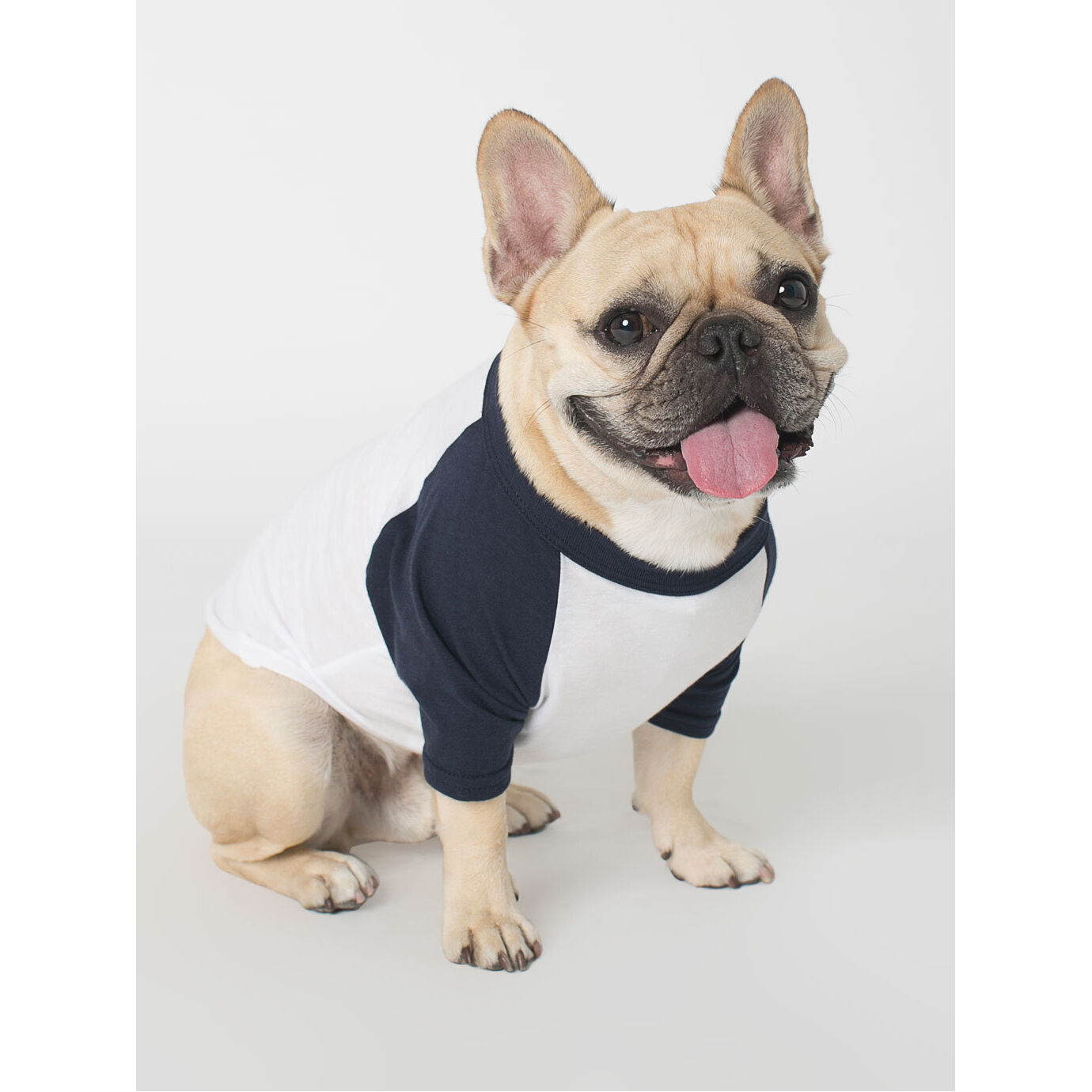 T Shirts for Dogs - Navy