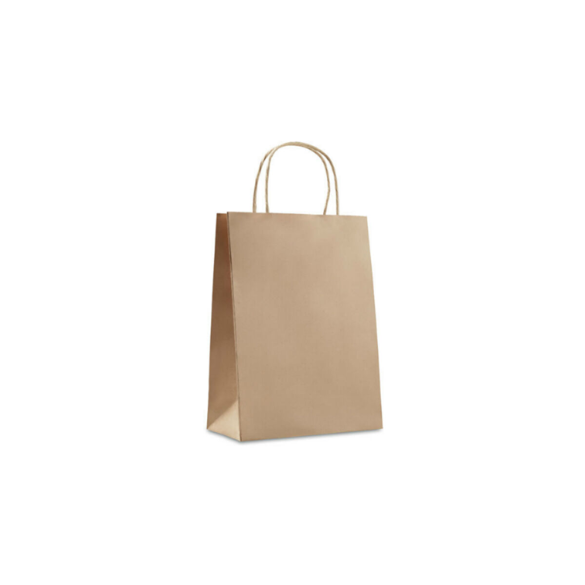 Paper Bag (Small)
