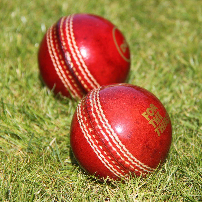 Promotional Branded Cricket Balls