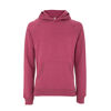 Salvage Recycled Pullover Hoody