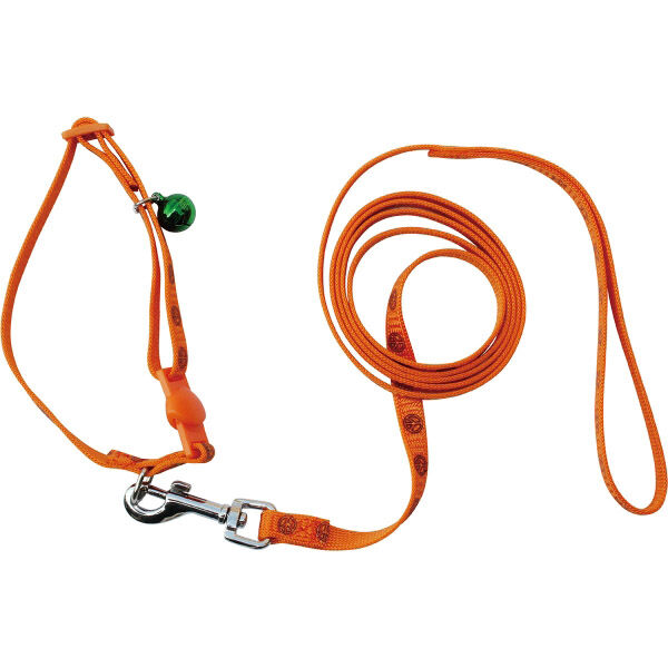 Cat Lead (Orange) - seen with matching collar