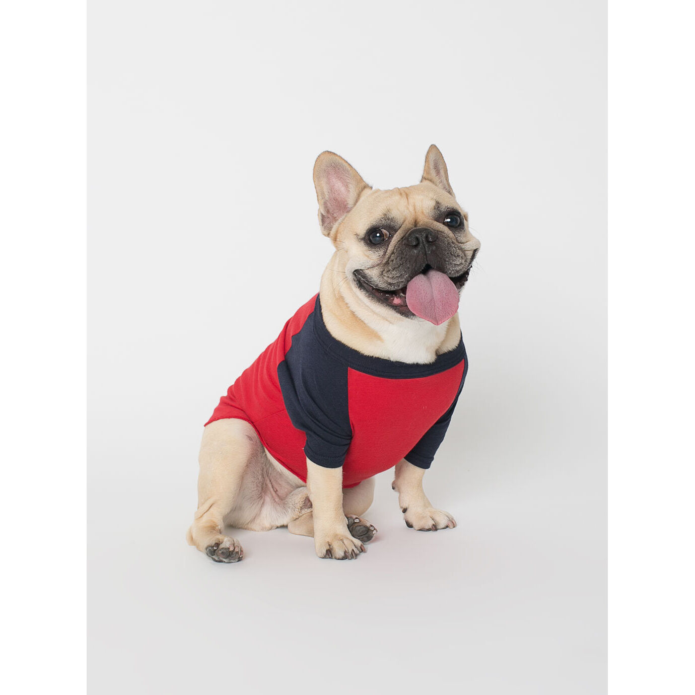 T Shirts for Dogs - Red