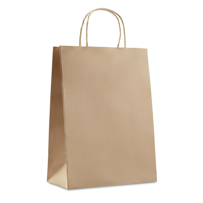 Paper Bag (Large)