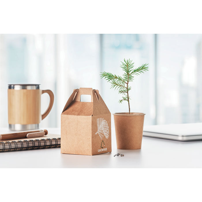 Promotional Living Trees