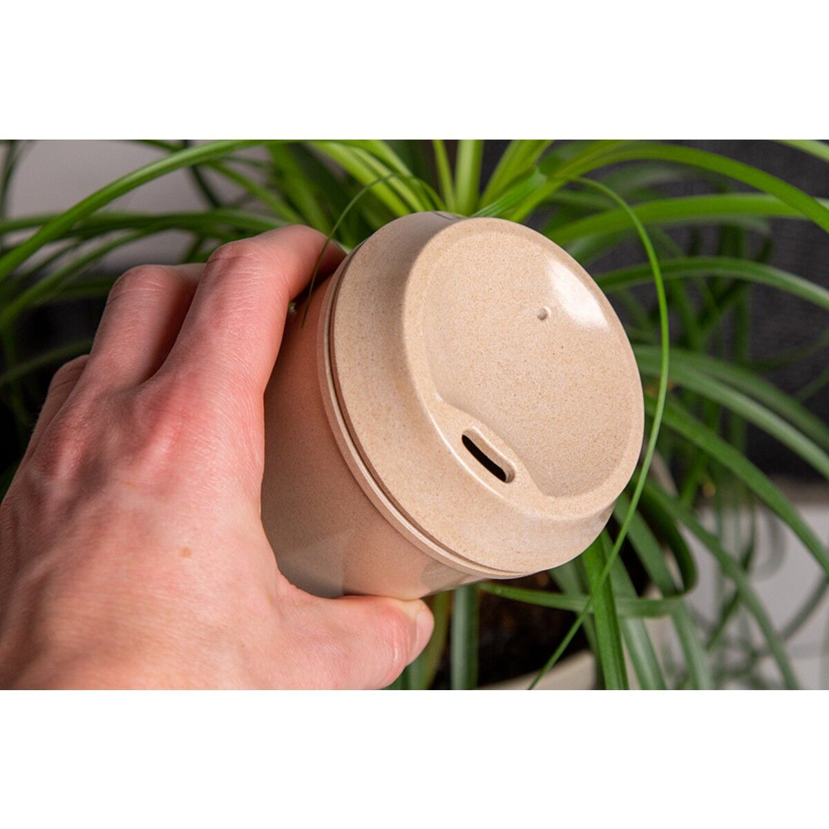 Rice Husk Sustainable Cups